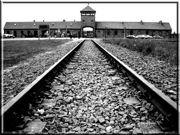 アウシュヴィッツ=ビルケナウ強制収容所の画像 p1_27